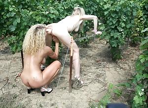 Fresh brat screwed away from 2 milfs hither vineyard
